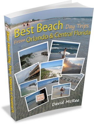 Beaches near Orlando book cover